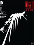 黑暗骑士Ⅲ:至高种族漫画